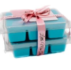 Jo Malone Wild Bluebell Inspired Wax Melts